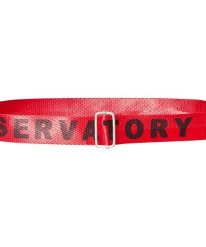 The Animals Observatory Lizard Skärp Red Letters L (90 cm)